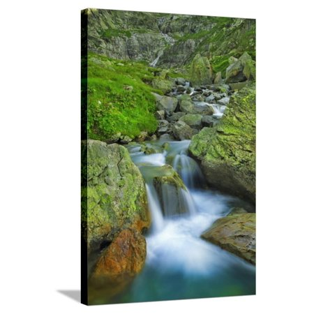 Mountain Brook near Susten Pass Stretched Canvas Print Wall Art By Frank Krahmer