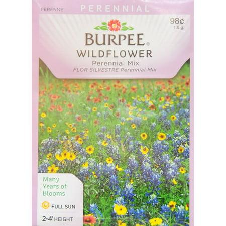 Burpee wildflower perennial mix seed packet walmart burpee wildflower perennial mix seed packet mightylinksfo