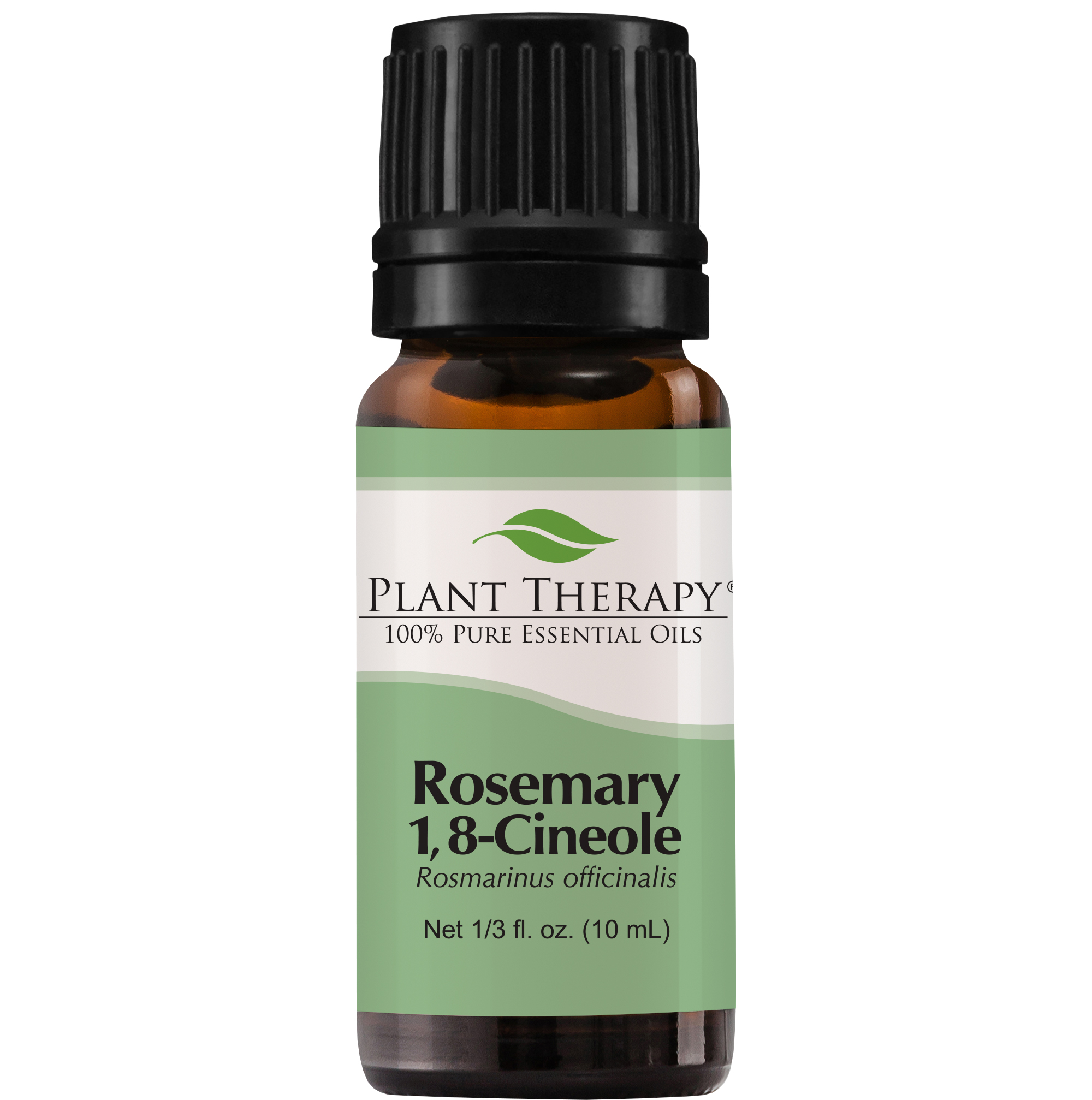 Plant Therapy Rosemary Essential Oil | 100% Pure, Undiluted, Natural Aromatherapy, Therapeutic Grade | 10 mL (1/3 oz)