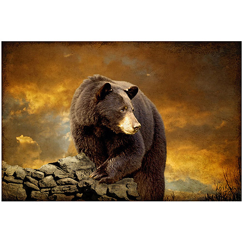 "Trademark Fine Art ""The Bear Went Over the Mountain"" Canvas Art by Lois Bryan"