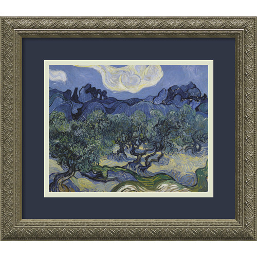 Amanti Art 'The Olive Trees 1889' by Vincent Van Gogh Framed Painting Print