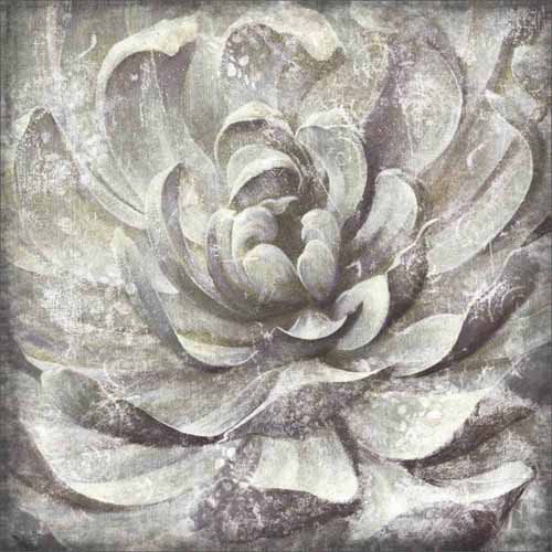 Distressed Neutral Close Up Succulent Plant Nature Painting Grey White Canvas Art By Pied Piper Creative Walmart Com Walmart Com