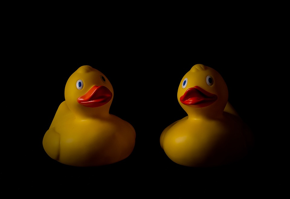 LAMINATED POSTER Rubber Duck Rubber Ducks Duck Ducks Bath Toy Toys Poster Print 24 x 36 by Home Comforts
