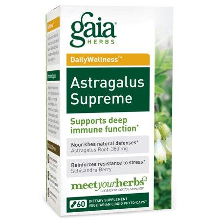 Gaia Herbs, DailyWellness, Astragalus Supreme, 60 Vegetarian Liquid Phyto-Caps(pack of 2)