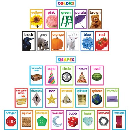 Teacher Created Resources TCR8799 5.75 x 8.5 in. Colorful Photo Shapes & Colors Cards Bulletin Board (Photo Bulletin Board Set)