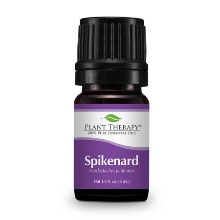 Plant Therapy Spikenard Essential Oil 5 Ml  1 6 Fl  Oz   100  Pure  Undiluted  Therapeutic Grade