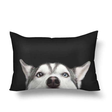 GCKG Siberian Husky Dog Face Blue Eyes Animal Nature Pillow Cases Pillowcase 20x30 inches - image 4 de 4