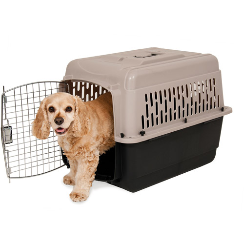 Dog Taxi~Fur Mom~Fur Baby~Dogs~Taxi Service