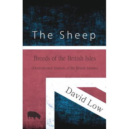 The Sheep - Breeds of the British Isles (Domesticated Animals of the British Islands) - (List Of Islands In The British Isles)