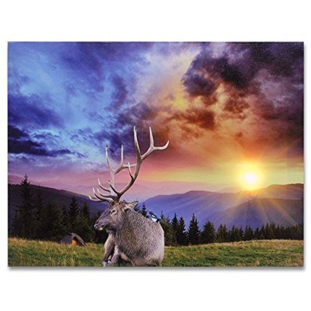 Deer Lighted Canvas Print - LED Picture with a Sunset Scene - Wildlife Artwork - 16x12 Inch (Life Artwork)