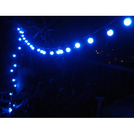 Fantado 50 Indoor/Dry Outdoor Blue LED Globe Ball String Lights, 17FT Black Cord by PaperLanternStore - Hanukkah String Lights