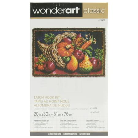 "Wonderart Classic Latch Hook Kit 20""X30"" - image 1 of 1"
