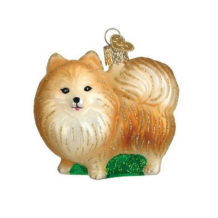 Pomeranian with Green Grass Glass Ornament