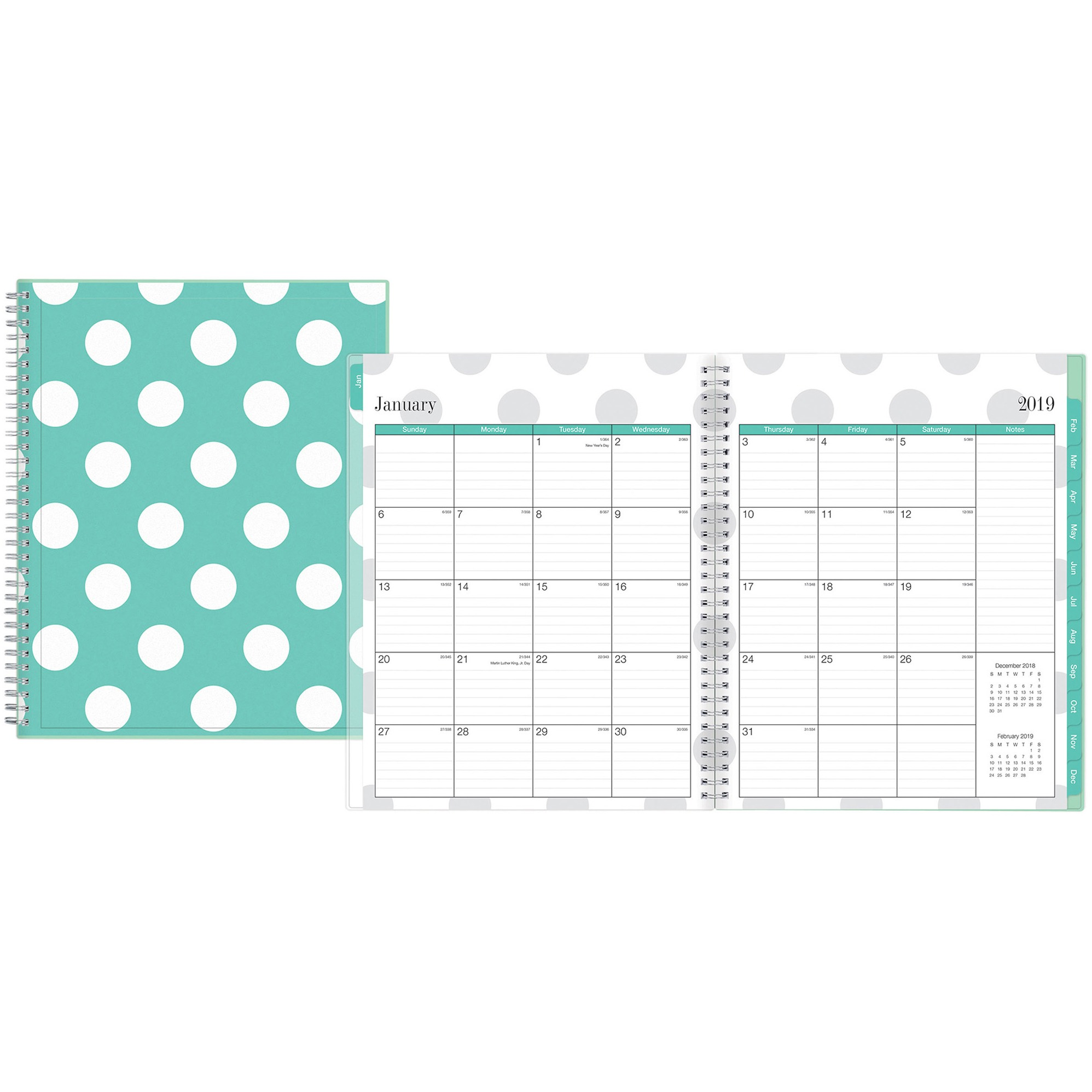 Blue Sky, BLS100655, Penelope Weekly/Monthly Planner, 1 Each, Clear,Multi