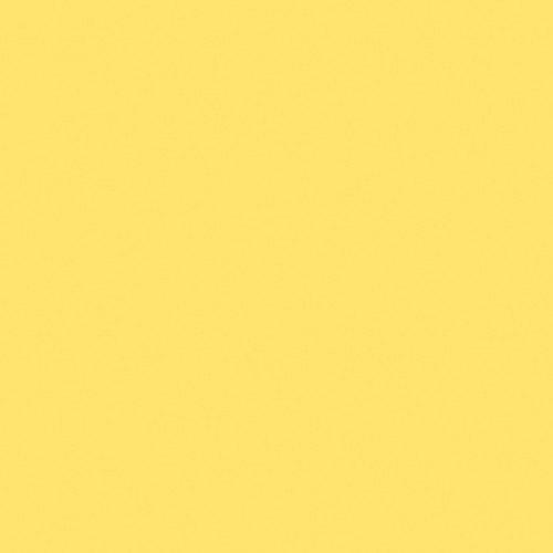 ScreenIt Matte Tube Paint, 5 oz