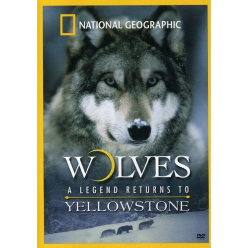 Wolves: A Legend Returns To Yellowstone (Full Frame)