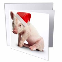 3dRose Christmas Pig, Greeting Cards, 6 x 6 inches, set of 12