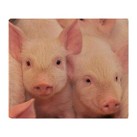 - CafePress - Pigs On One Of Farms - Soft Fleece Throw Blanket, 50