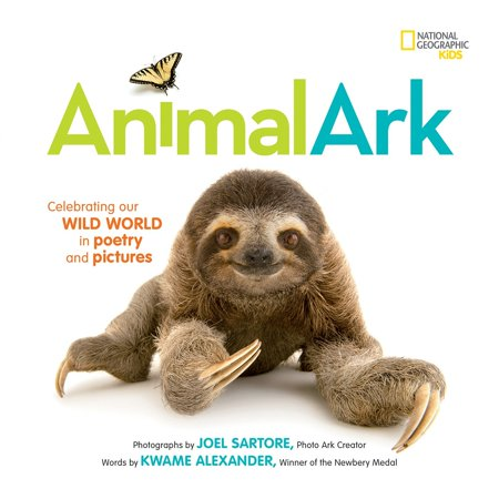 Picture Pottery (Animal Ark : Celebrating our Wild World in Poetry and Pictures)
