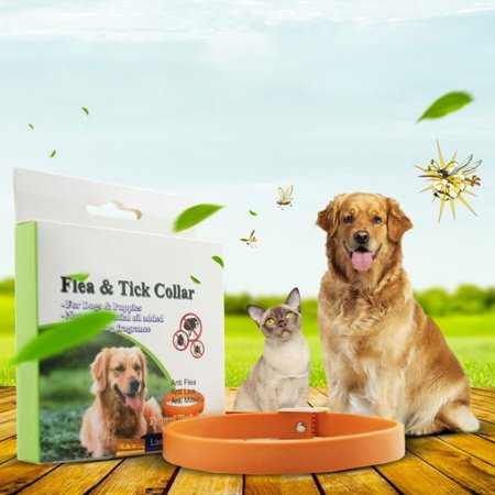 Flea Tick Collar for Dogs, Hypoallergenic Tick Collar Insect Repellent Collar with Natural Plant Extracts -