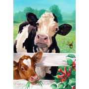 """What's Up Buzz House Flag Cows Calf Bumblebees Summer Pastures 28"""" x 40"""""""