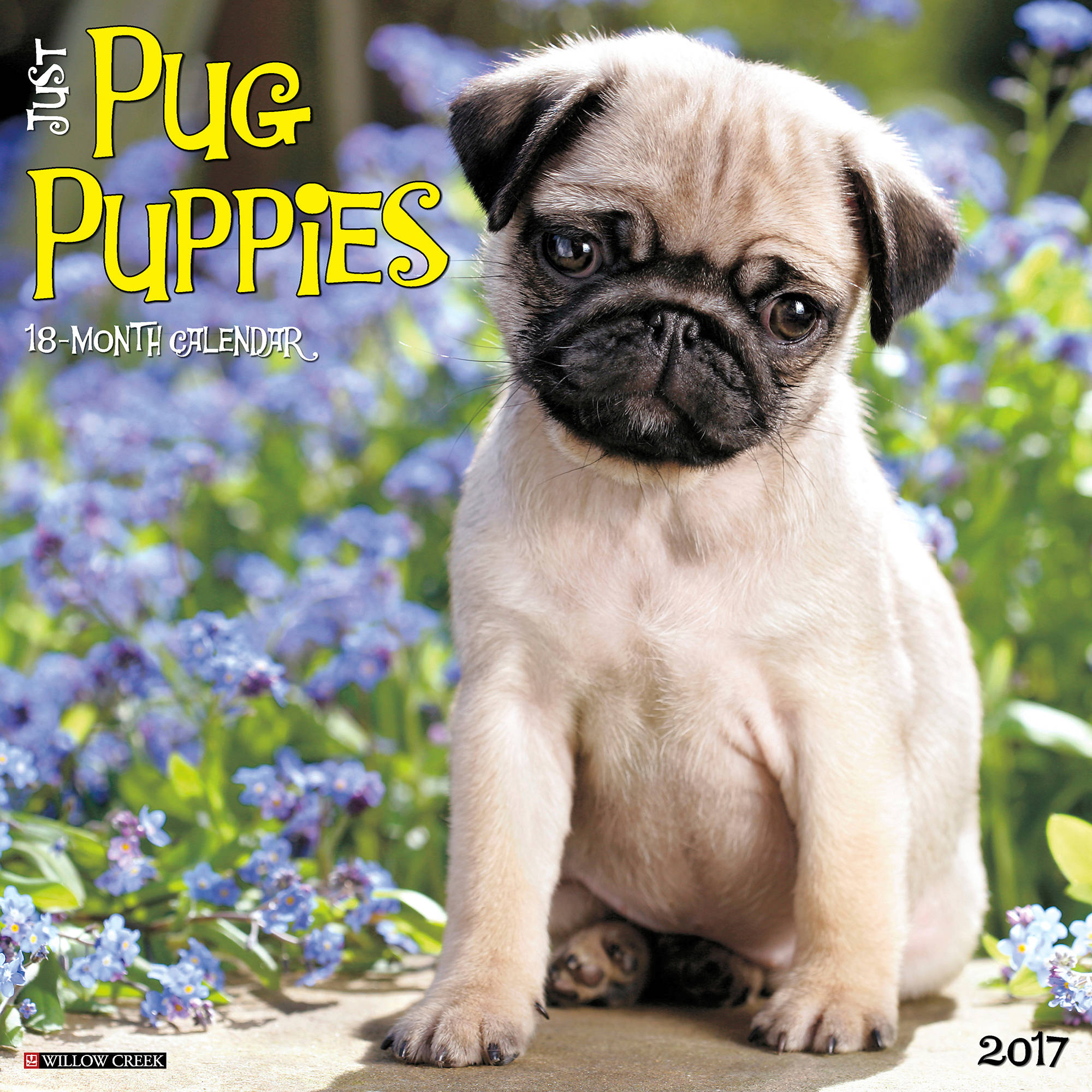 2017 Just Pug Puppies Wall Calendar