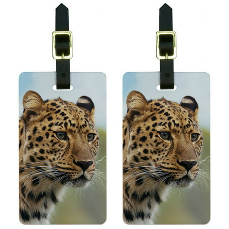 Megaphone Bag Tag - Leopard Portrait Big Hunting Cat Luggage Tags Suitcase Carry-On ID, Set of 2