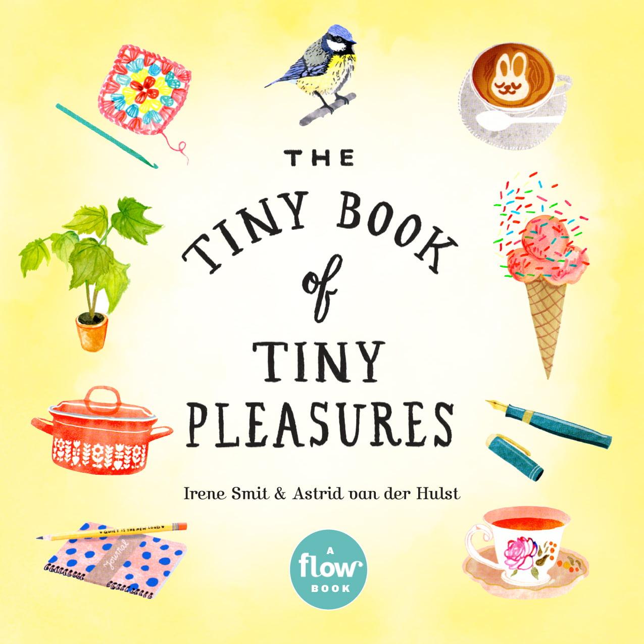 Tiny Book of Tiny Pleasures - Paperback