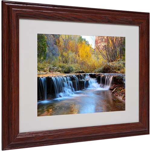 "Trademark Fine Art ""Zion Autumn"" Matted Framed Art by Pierre Leclerc"