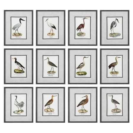 Uttermost Seashore Birds Prints - Set of 12