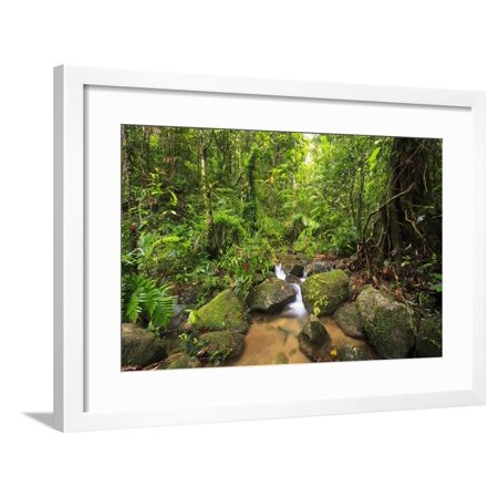 Josephine Falls Is One of the Most Popular Sets of Waterfalls on the South Side of Cairns Framed Print Wall Art By Paul (1 Waterfall)