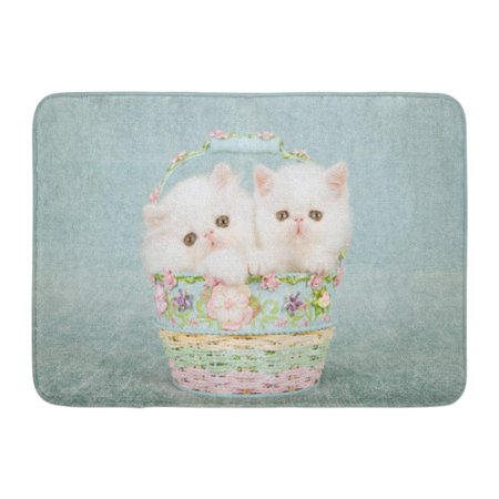 GODPOK White Persian Kitten and Exotic Sitting Inside Small Round Blue and Pink Basket Decorated with Tiny Silk Rug Doormat Bath Mat 23.6x15.7 inch Inside The Pink Door