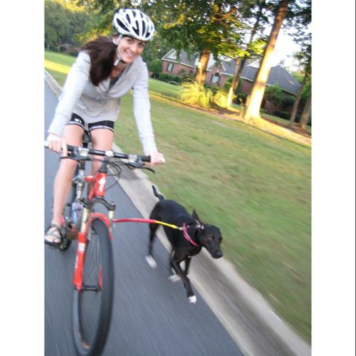 Bike Tow Leash - Dog Bicycle Attachment (Red) Exercise yo...