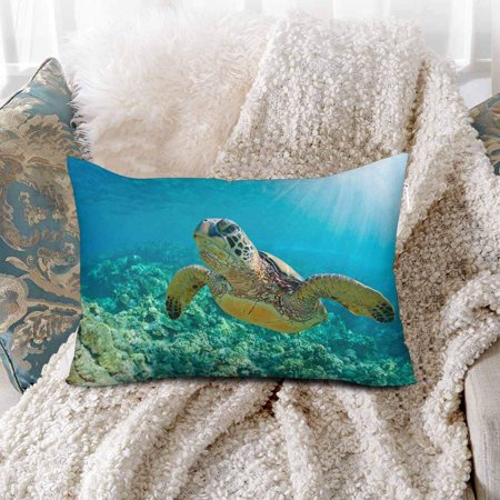 GCKG Sea Turtle Coral Reef Ocean Water Underwater Pillow Cases Pillowcase 20x30 inches - image 1 de 4