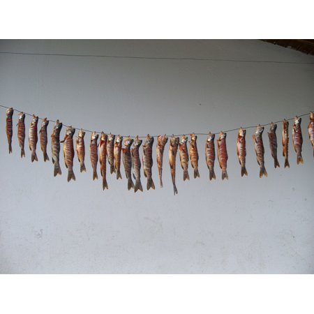 LAMINATED POSTER Eat Fish Thailand Food Aquarium Fish Eye Pez Poster Print 24 x 36