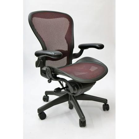 Aeron Chair By Herman Miller Basic Model with Lumbar