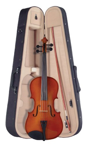 Palatino VA-450-14 Allegro Viola Outfit, 14 Inches Multi-Colored by Palatino