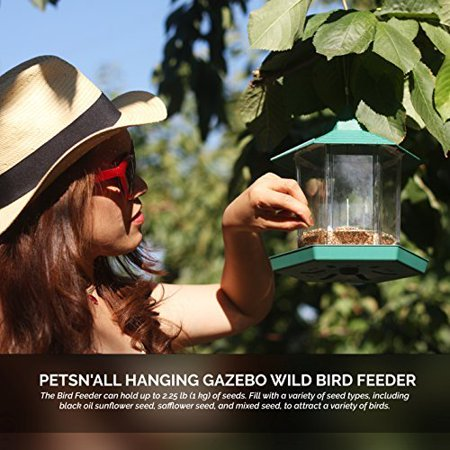 (Wild Bird Feeder - Squirrel Proof Transparent Hanging Feeders for Patio, Backyard, Home & Garden, Perfect for All Wild Birds)