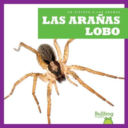 Un Vistazo a Las Aranas (an Eye on Spiders): Las Aranas Lobo (Wolf Spiders) (Hardcover) - Brown Wolf Spider