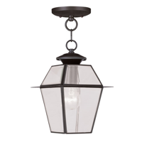 Outdoor Pendants 1 Light With Clear Beveled Glass Bronze size 8 in 100 Watts - World of Crystal