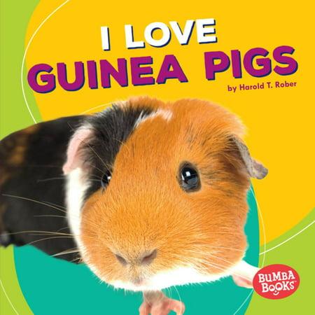 I Love Guinea Pigs - eBook