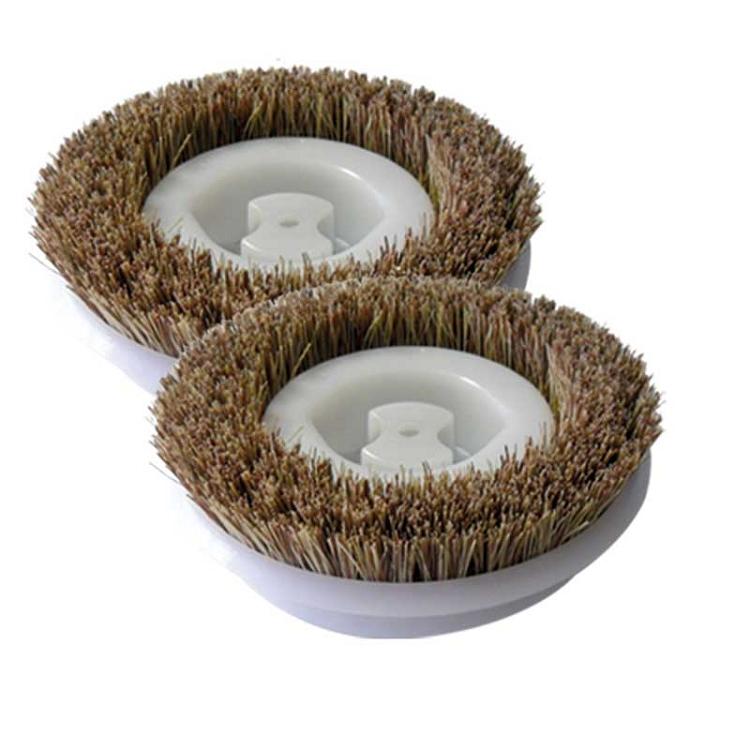 Scrubbing Brush 2-Pack for Regina Floor Scrubbers