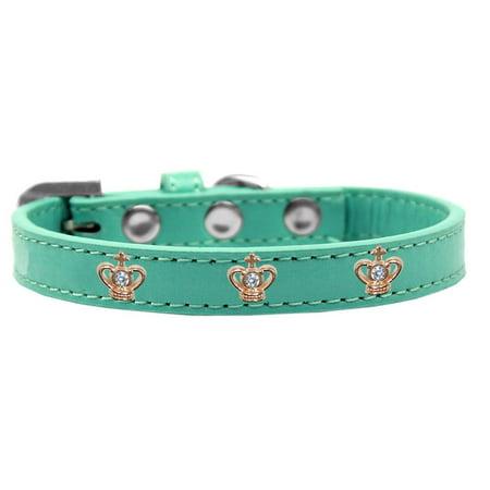 Aqua Show Dog Collar (Gold Crown Widget Dog Collar Aqua Size 12)