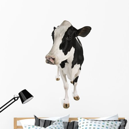 holstein cow wall decalwallmonkeys peel and stick graphic (48 in