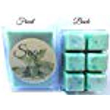 Sage - 3.2 Ounce Pack of Handmade Soy Wax Tarts - Scent Brick, Wickless Candle