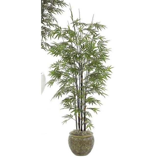 Autograph Foliages P-3762 - 7 Foot Japanese Bamboo Tree - Black Stem