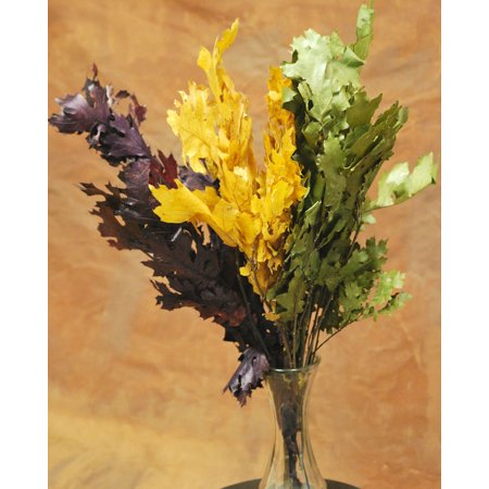 Preserved Fall Leaves on Branches 4 oz -- Single Bunch