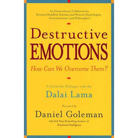 Destructive Emotions  A Scientific Dialogue With The Dalai Lama On How Can We Overcome Them
