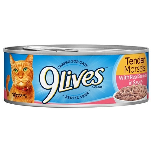 Image of 9Lives Tender Morsels Salmon Wet Cat Food, 5.5 Oz Pack of 4