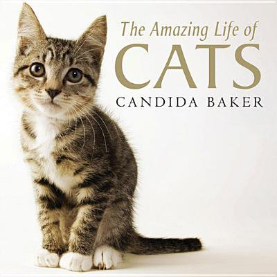 The Amazing Life of Cats - eBook